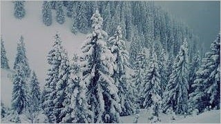 winter-2012-wallpaper-collection-bonus-size-10