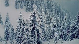 winter-2012-wallpaper-collection-bonus-size-10