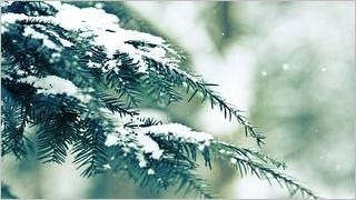 winter-2012-wallpaper-collection-bonus-size-05