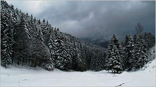 winter-2012-wallpaper-collection-bonus-size-13