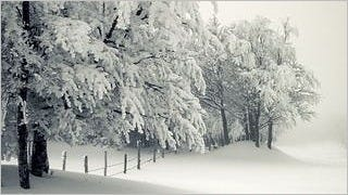 winter-2012-wallpaper-collection-bonus-size-08