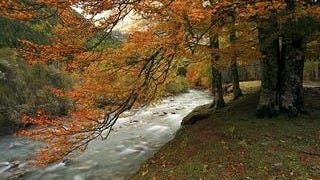 rivers-wallpaper-collection-series-two-10