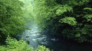 rivers-wallpaper-collection-series-two-01