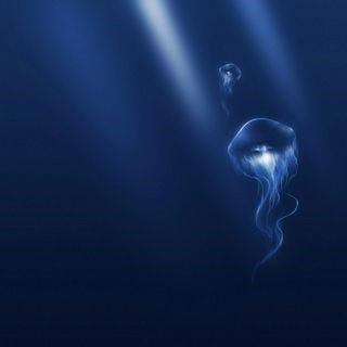 under-the-sea-wallpaper-collection-series-one-09