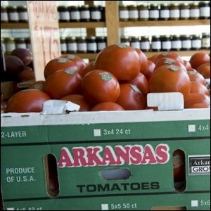 A box of ripe Arkansas tomatoes