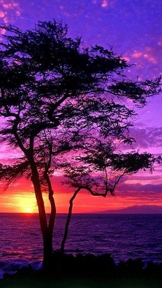 sunsets-wallpaper-collection-for-iphone-series-one-08