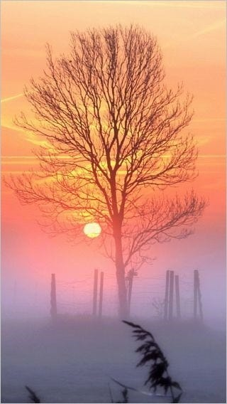 sunsets-wallpaper-collection-for-iphone-series-one-15
