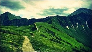 wilderness-pathways-wallpaper-collection-series-two-13