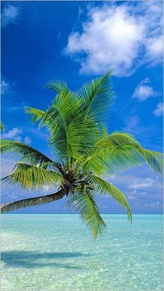 oceanside-vacation-wallpaper-collection-for-iphone-series-one-08