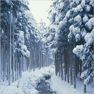 ice-cold-wallpaper-collection-for-ipad-series-one-10