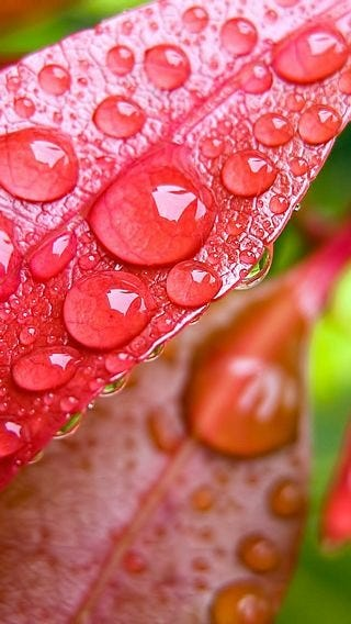 rainy-day-wallpaper-collection-for-iphone-series-one-03