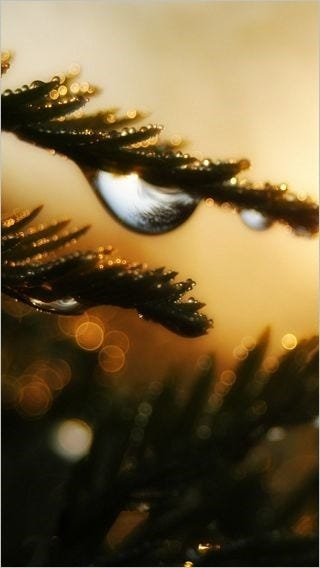 rainy-day-wallpaper-collection-for-iphone-series-one-05