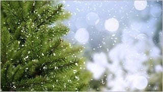 snowflakes-wallpaper-collection-series-one-15