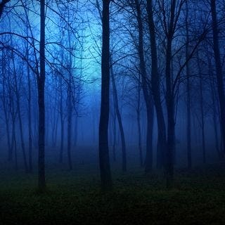 through-the-woods-wallpaper-collection-for-ipad-series-one-11