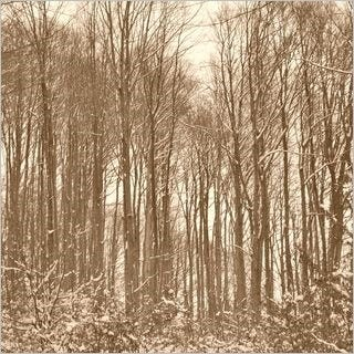through-the-woods-wallpaper-collection-for-ipad-series-one-13
