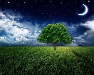 moonlight-wallpaper-collection-for-nexus-seven-series-one-05