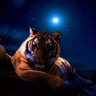 tigers-wallpaper-collection-for-ipad-series-one-10