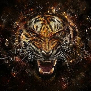 tigers-wallpaper-collection-for-ipad-series-one-16