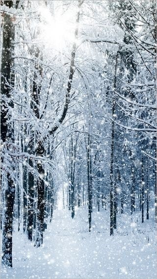 winter-wonderland-wallpaper-collection-for-your-iphone-series-one-05