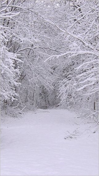 winter-wonderland-wallpaper-collection-for-your-iphone-series-one-11