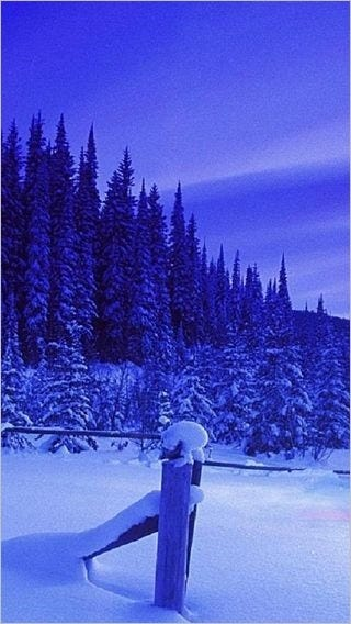 winter-wonderland-wallpaper-collection-for-your-iphone-series-one-14