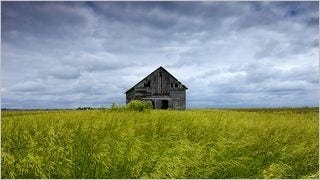 rustic-barns-wallpaper-collection-series-one-03