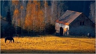 rustic-barns-wallpaper-collection-series-one-10