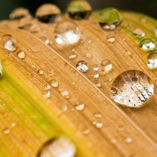 let-it-rain-wallpaper-collection-for-your-ipad-series-one-05