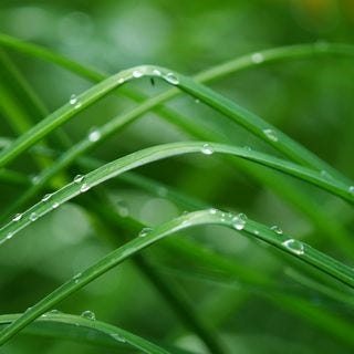 let-it-rain-wallpaper-collection-for-your-ipad-series-one-01