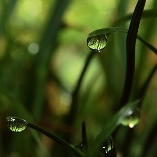 let-it-rain-wallpaper-collection-for-your-ipad-series-one-02