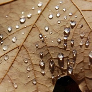 let-it-rain-wallpaper-collection-for-your-ipad-series-one-06