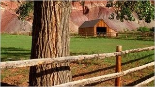 rustic-barns-wallpaper-collection-series-one-02