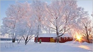 rustic-barns-wallpaper-collection-series-one-13