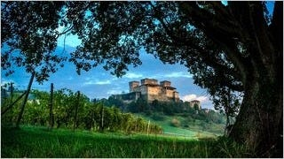 castles-wallpaper-collection-series-two-06
