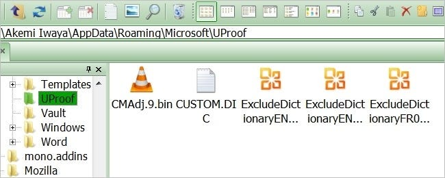 where-is-the-custom-dictionary-for-microsoft-word-located-00