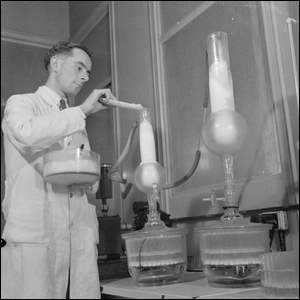 Scientist synthesizing penicillin in the lab