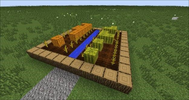 how to plant pumpkin seeds in minecraft