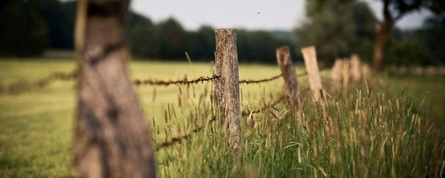 fences-wallpaper-collection-series-one-00