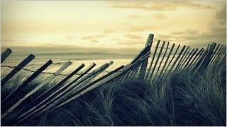 fences-wallpaper-collection-series-one-05