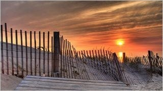 fences-wallpaper-collection-series-one-06