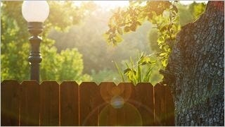 fences-wallpaper-collection-series-one-07