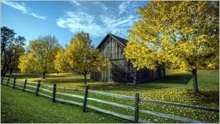 fences-wallpaper-collection-series-one-13