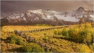 fences-wallpaper-collection-series-one-14