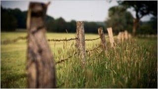 fences-wallpaper-collection-series-one-15