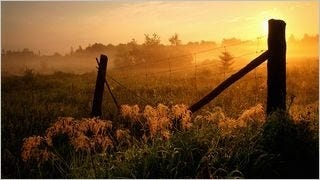 fences-wallpaper-collection-series-one-16