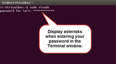 How to Make Password Asterisks Visible in the Terminal Window in Linux