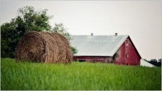 rustic-barns-wallpaper-collection-series-two-07