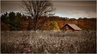 rustic-barns-wallpaper-collection-series-two-08