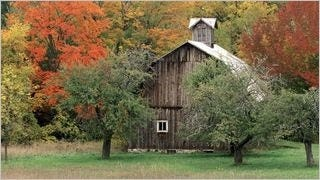 rustic-barns-wallpaper-collection-series-two-09