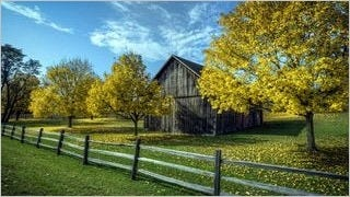 rustic-barns-wallpaper-collection-series-two-10